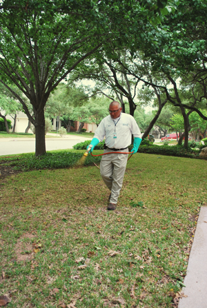 Organic Lawn Care Amp Services Chem Free Austin Tx